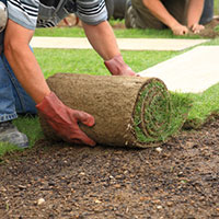 laying-sod-for-new-lawn