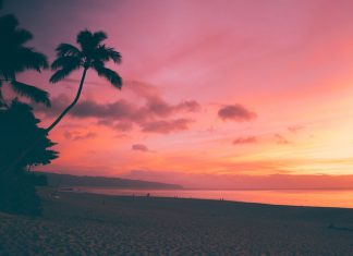 Your Ultimate Guide to Moving to Hawaii